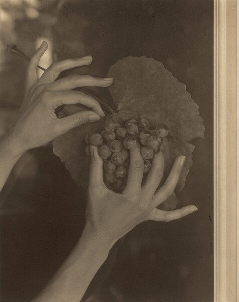 'Georgia O'Keeffe Hands and Grapes', 1921. Alfred Stieglitz.